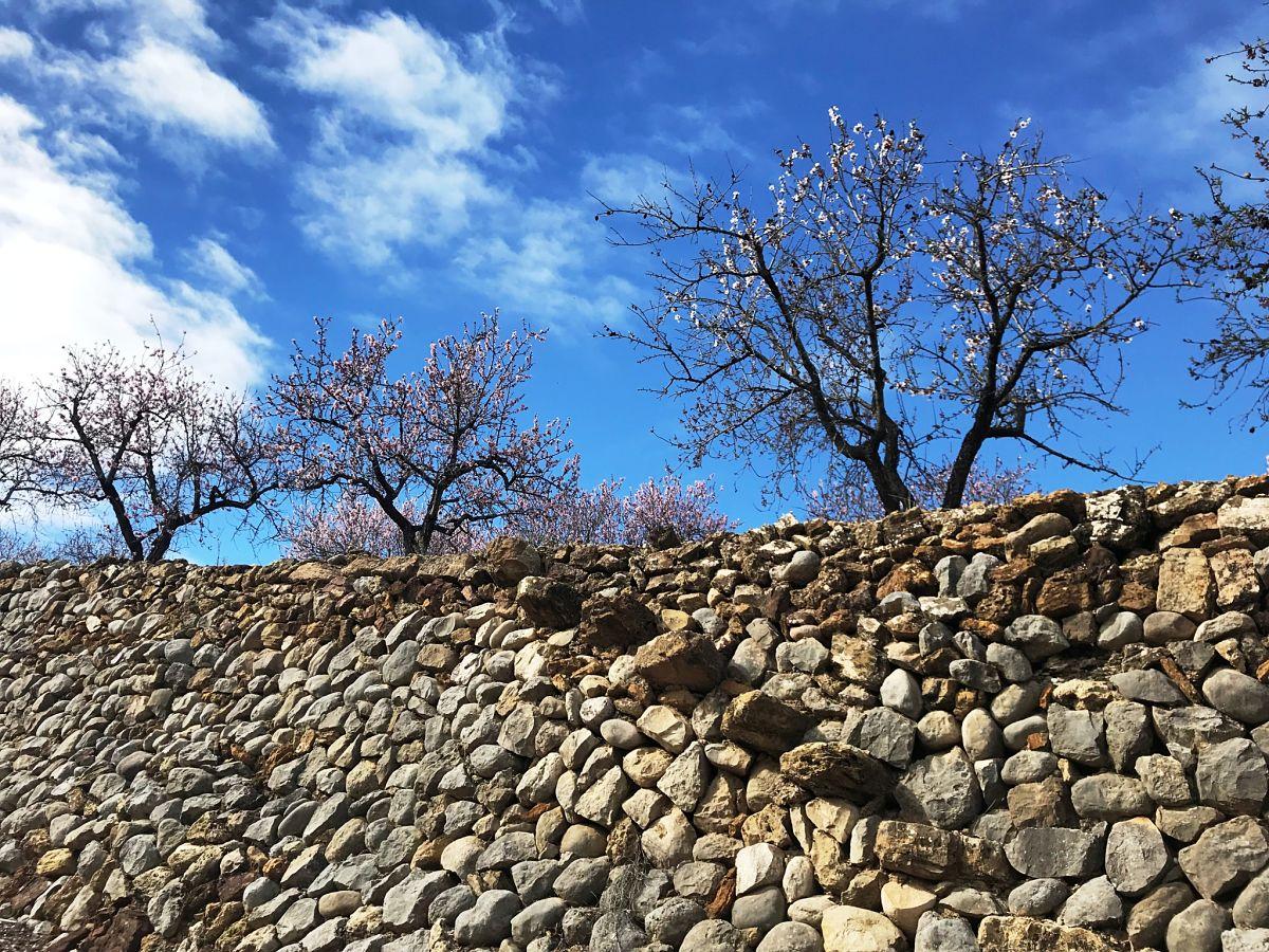 Muros de piedra seca, PR-CV 425 © M.J. Aguilar, 2018