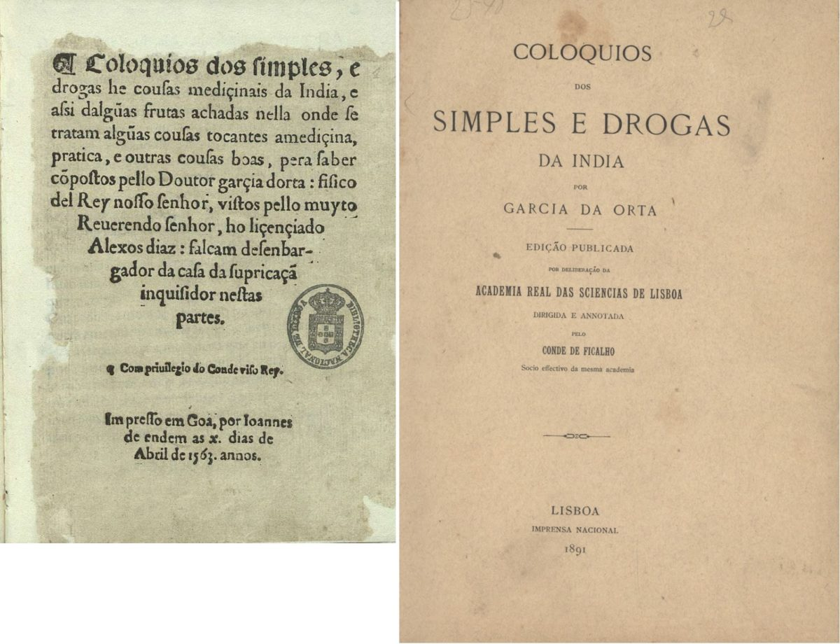 Coloquios simples Garcia de Orta