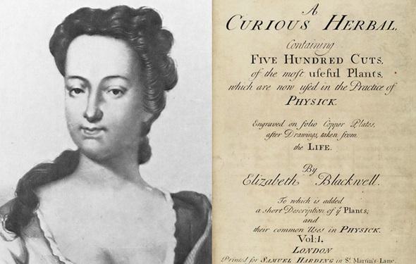 elizabeth blackwell ilustradora a curious herbal