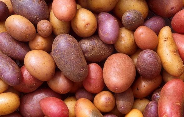 patatas_2