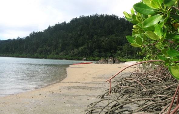 Whitsunday-dudongbeach