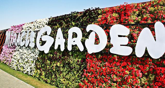 Miracle-Garden-1_1