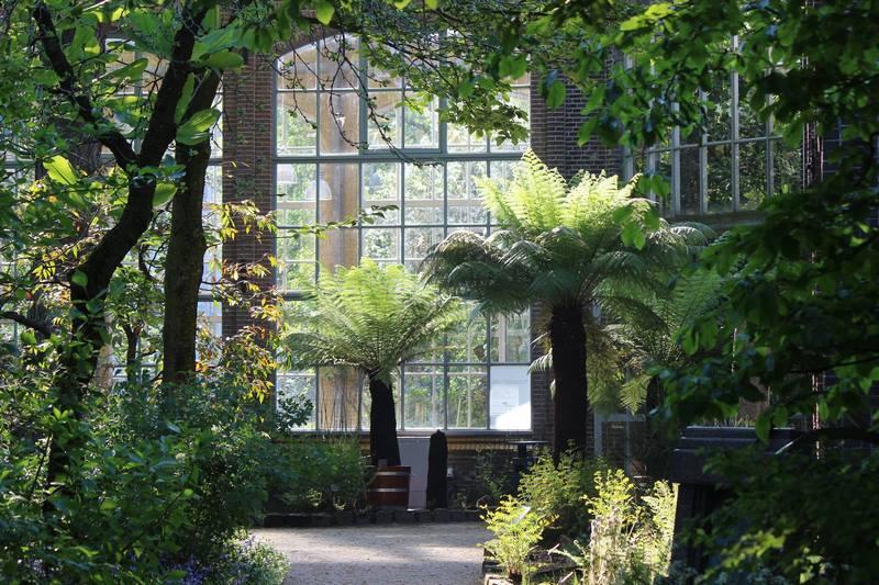 09 Hortus Botanicus Amsterdam