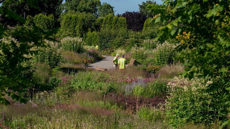 FOTO 3 jardin vlinderhof