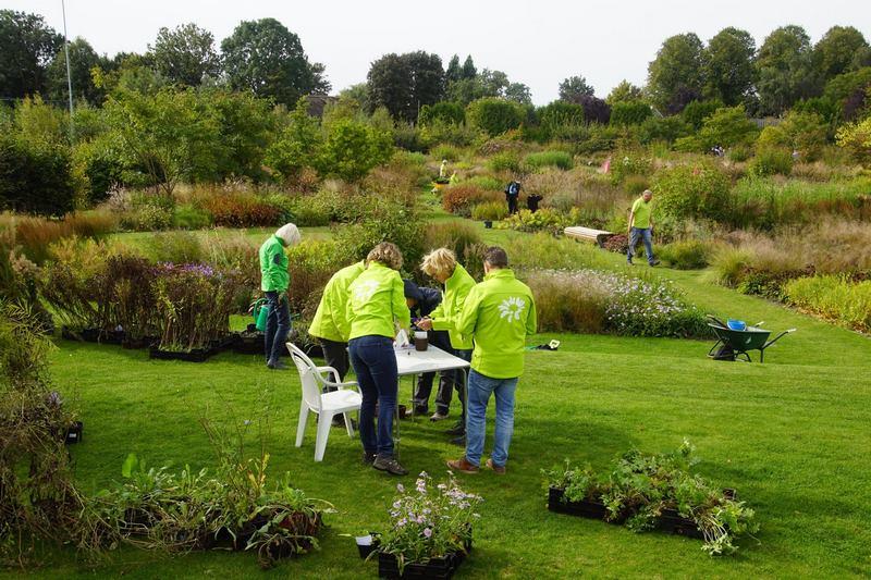 FOTO 4 voluntarios vlinderhof otoño 2018 Copiar