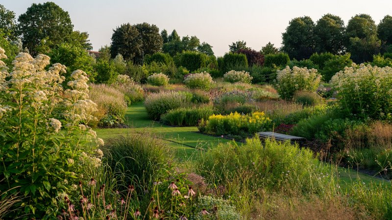 FOTO 7 jardin vlinderhof