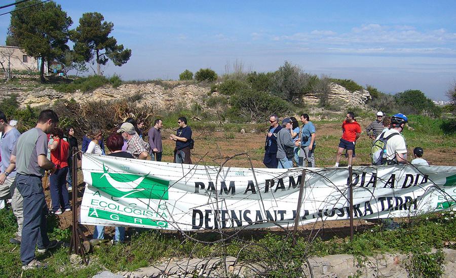Voluntariat ambiental a la Marjal dAlmenara 2008