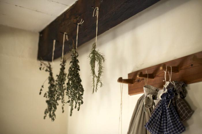 secar hierbas en casa