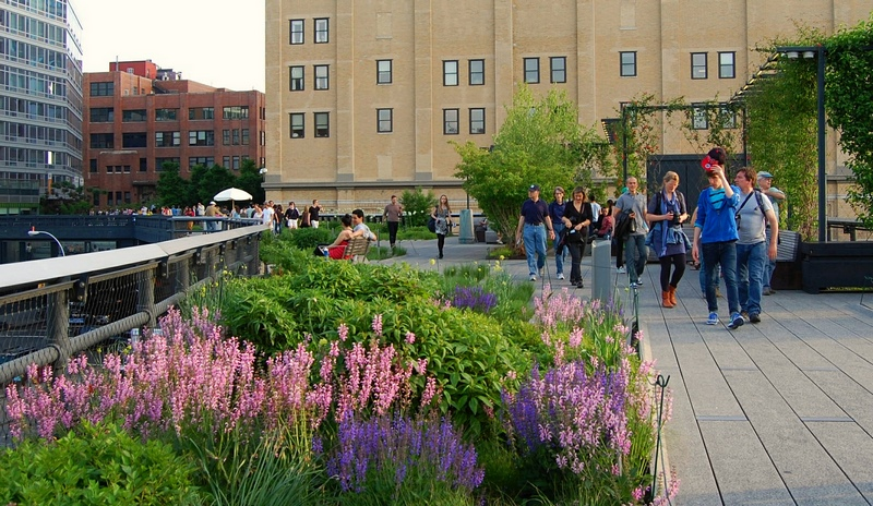 FOTO 6 High Line NYC 800px