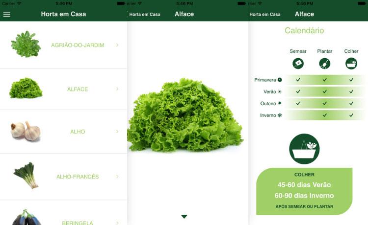 aplicativo gratuito horta casa plantit