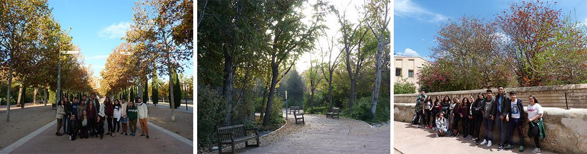 2.Paseos parque