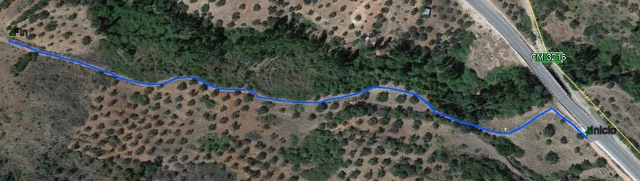 ruta del sauco