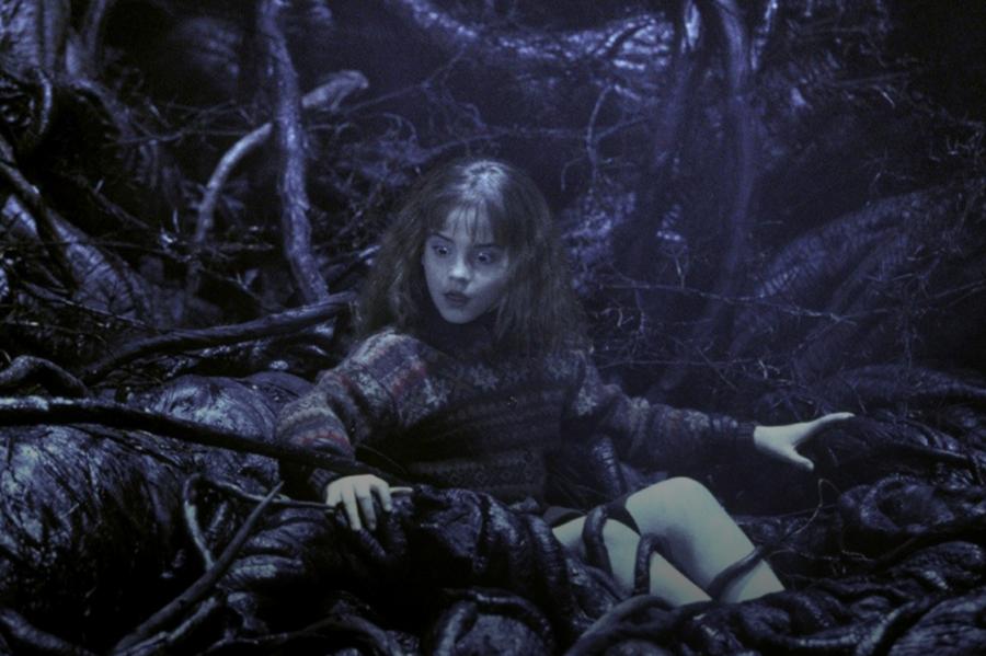 hermione lazo diablo