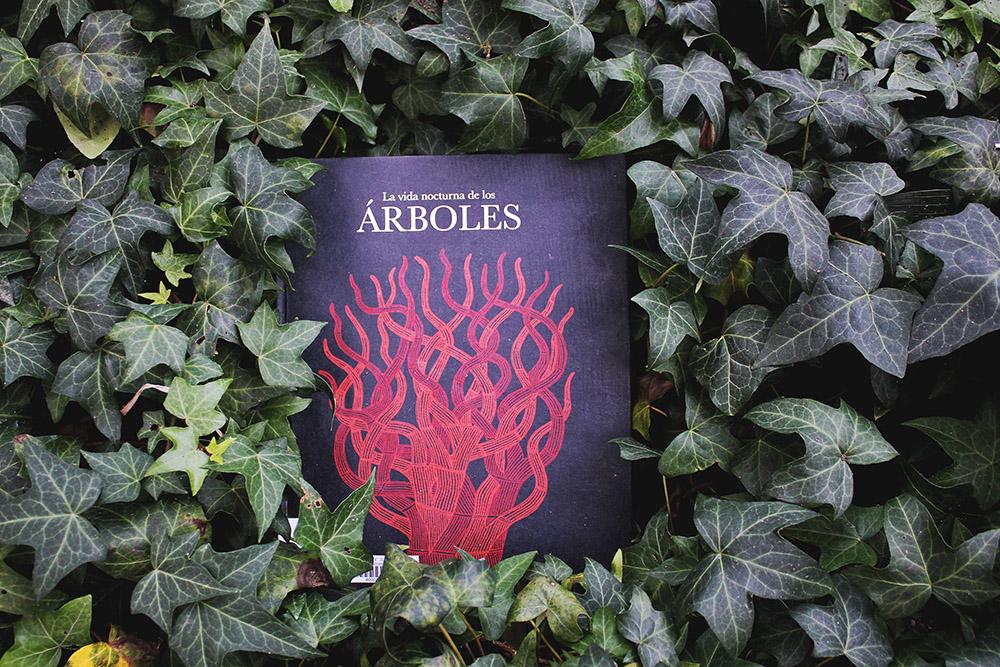 ARBOLES NOCTURNA 1