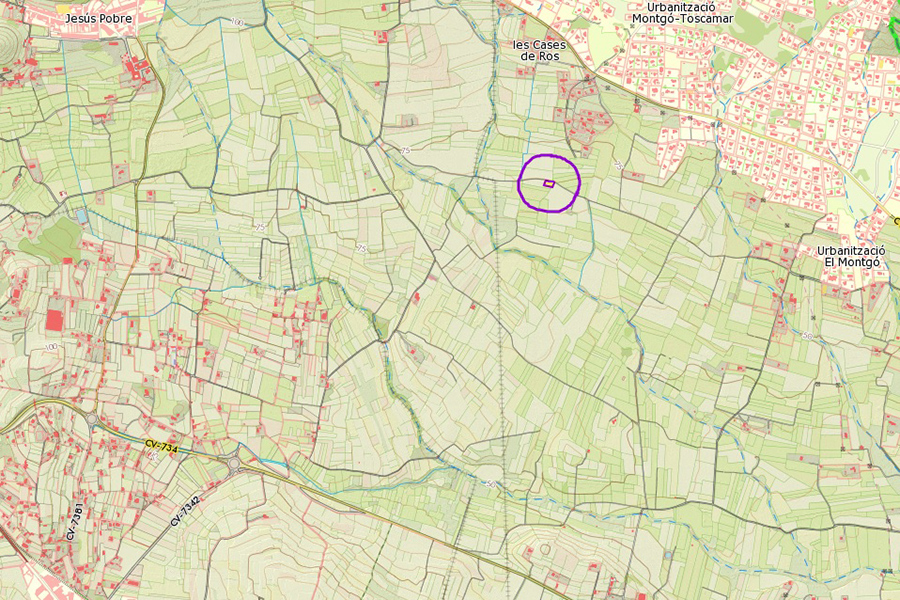 ubicacio geografica olivera milenaria