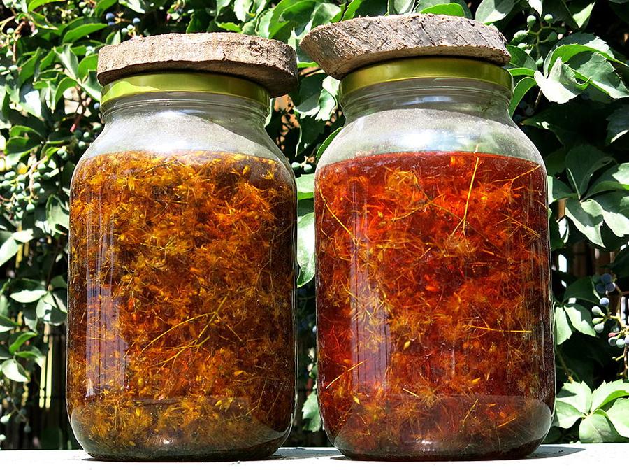 4 hypericum oil casselmann