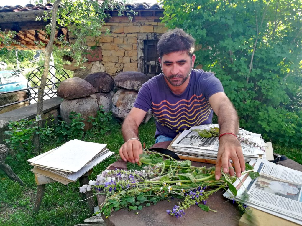 Botànic del mes: Pablo Ferrer