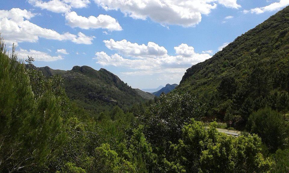 Imatge del Facebook del Paratge Natural Municipal Parpalló Borrell. Gandia