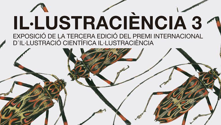 Cartell basat en l'obra de José Ignacio Mesa