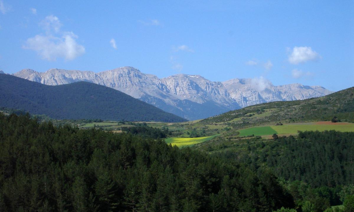 Vessant nord de la serra del Cadí/ © Arxiu del Parc Natural del Cadí-Moixeró